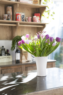 Bunch of tulips on kitchen counterの写真素材 [FYI04339027]