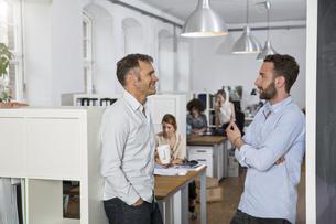 Colleagues talking in officeの写真素材 [FYI04339175]