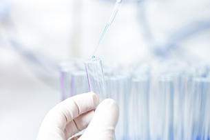 Germany, Human hand pipetting blue liquid into test tubesの写真素材 [FYI04339374]