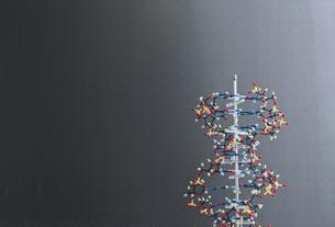 Germany, Model of DNA molecule in front of chalk boardの写真素材 [FYI04339378]