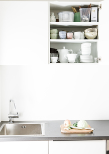 Modern kitchen, open kitchen cupboardの写真素材 [FYI04339405]