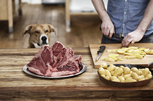 Man in kitchen preparing potatoes and steaks with dog watchiの写真素材 [FYI04339535]