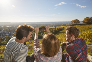 Friends sitting on a hill in a vineyard taking cell phone piの写真素材 [FYI04339883]