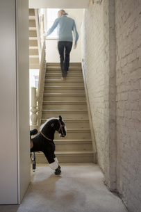 Mature man moving up staircaseの写真素材 [FYI04340005]