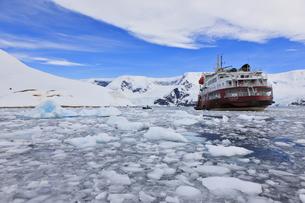 South Atlantic Ocean, Antarctica, Antarctic Peninsula, Gerlaの写真素材 [FYI04340143]