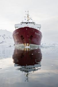South Atlantic Ocean, Antarctica, Antarctic Peninsula, Gerlaの写真素材 [FYI04340144]