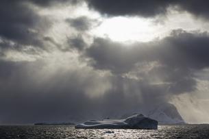 South Atlantic Ocean, Antarctica, Antarctic Peninsula, Gerlaの写真素材 [FYI04340153]