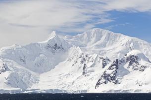 South Atlantic Ocean, Antarctica, Antarctic Peninsula, Gerlaの写真素材 [FYI04340154]
