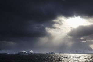 South Atlantic Ocean, Antarctica, Antarctic Peninsula, Gerlaの写真素材 [FYI04340158]