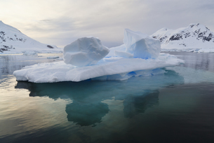 South Atlantic Ocean, Antarctica, Antarctic Peninsula, Gerlaの写真素材 [FYI04340160]