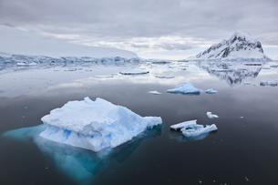 South Atlantic Ocean, Antarctica, Antarctic Peninsula, Lemaiの写真素材 [FYI04340163]