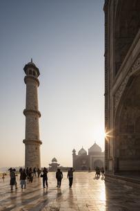 India, Uttar Pradesh, Agra, View of Taj Mahalの写真素材 [FYI04340213]