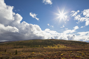 USA, Alaska, Landscape along Denali Highway in autumn with Aの写真素材 [FYI04340223]