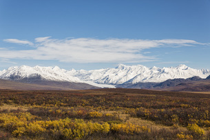 USA, Alaska, Landscape along Denali Highway in autumn with Aの写真素材 [FYI04340224]