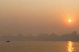 Brazil, Mato Grosso do Sul, Pantanal, Cuiaba River, Forest fの写真素材 [FYI04340305]