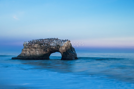 USA, California, Santa Cruz County, Big Sur, Pacific Ocean,の写真素材 [FYI04340358]
