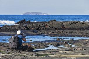 Ecuador, Galapagos Islands, Santiago, man photographing at sの写真素材 [FYI04340364]