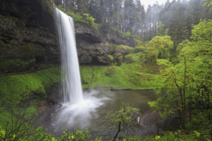 USA, Oregon, Silver Falls State Park, South Fallsの写真素材 [FYI04340411]