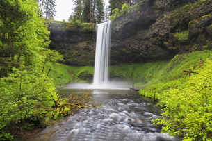 USA, Oregon, Silver Falls State Park, South Fallsの写真素材 [FYI04340413]