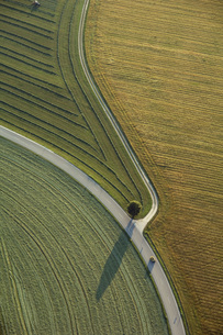 Germany, Bavaria, fields and country roads, aerial viewの写真素材 [FYI04340624]