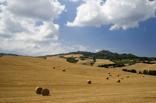 Italy, Tuscany, Bales of straw on harvested fieldsの写真素材 [FYI04340811]