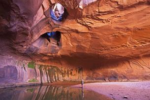 USA, Utah, Grand Staircase-Escalante National Monument, Neonの写真素材 [FYI04340907]