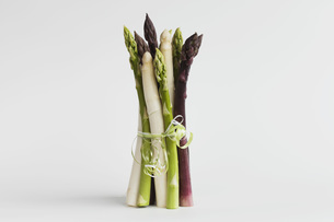 Bundle of various asparagus on white backgroundの写真素材 [FYI04341040]