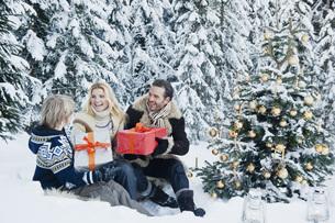 Austria, Salzburg County, Family celebrating christmas in snの写真素材 [FYI04341189]