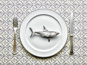 Toy shark on plate with fork and knife, close upの写真素材 [FYI04341257]