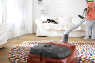Boy in living room hoovering the sofa with catの写真素材 [FYI04341652]