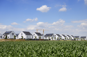 Germany, Duesseldorf, development area with one-family houseの写真素材 [FYI04341746]