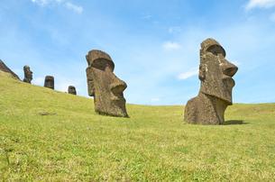 Chile, Easter Island, Moai stone heads in Rano Raraku quarryの写真素材 [FYI04341749]
