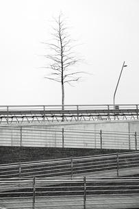 Germany, Hamburg, HafenCity, New University, pedestrian walkの写真素材 [FYI04341798]