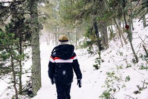 Boy walking through the woods in winterの写真素材 [FYI04341800]