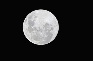 South Africa, full moonの写真素材 [FYI04342016]