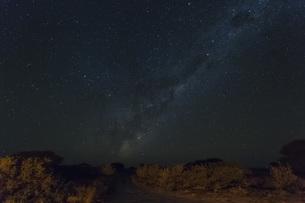 Botswana, Kalahari, Central Kalahari Game Reserve, starry skの写真素材 [FYI04342029]