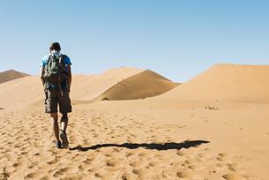 Namibia, Namib Desert, man with backpack walking  through thの写真素材 [FYI04342307]
