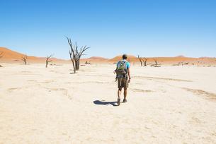 Namibia, Namib Desert, man with backpack walking through Deaの写真素材 [FYI04342309]