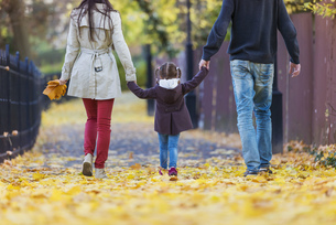 Family walking hand in hand in autumnal parkの写真素材 [FYI04342346]