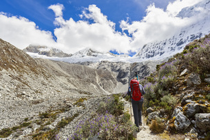 Peru, Andes, Cordillera Blanca, Huascaran National Park, touの写真素材 [FYI04343089]