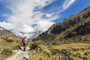 Peru, Andes, Cordillera Blanca, Huascaran National Park, touの写真素材 [FYI04343093]