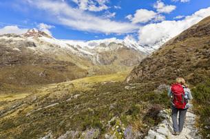 Peru, Andes, Cordillera Blanca, Huascaran National Park, touの写真素材 [FYI04343094]