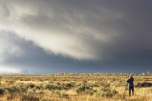 USA, Wyoming, Rocky Mountains, Grand Teton National Park, woの写真素材 [FYI04343145]