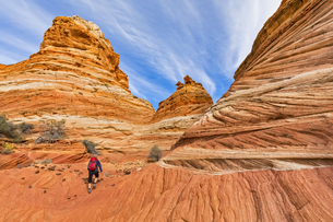 USA, Arizona, Page, Paria Canyon, Vermillion Cliffs Wilderneの写真素材 [FYI04343184]