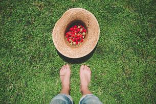 Barefoot woman standing next to straw hat full of strawberriの写真素材 [FYI04343293]