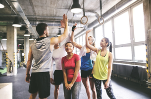 Group of young people high fiving in gymの写真素材 [FYI04343323]