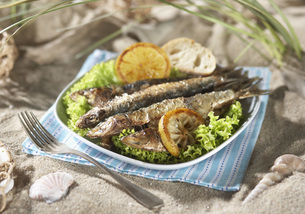 Grilled sardines with salad and lemon in plateの写真素材 [FYI04343587]