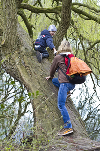 Germany, Kiel, Mother and son climbing on treeの写真素材 [FYI04343650]