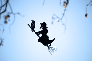 Germany, Constance, Witch against blue skyの写真素材 [FYI04343761]