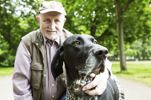 Portrait of senior man with his German Shorthaired Pointer iの写真素材 [FYI04343794]